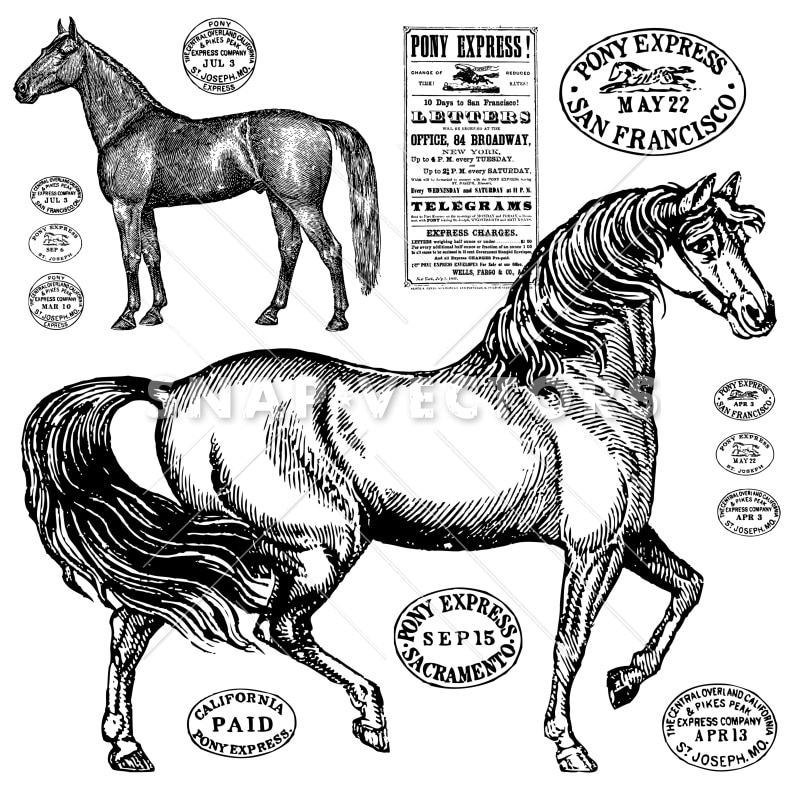 Vector Vintage Horse Graphics
