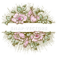 Vector Clipart Watercolor White Flower Frame