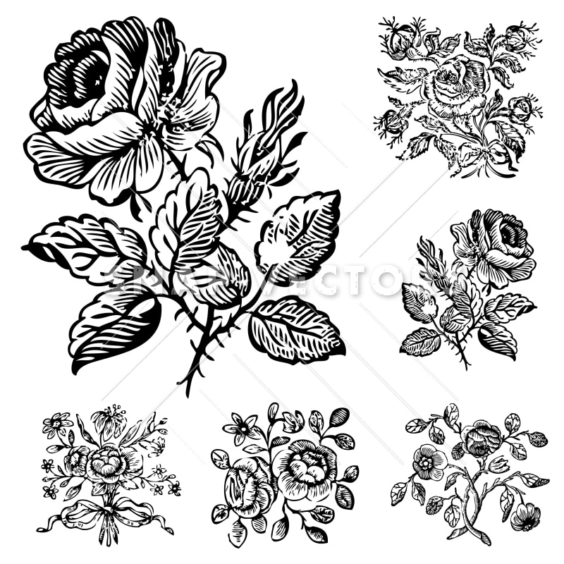 Line Art Flowers Vector : Vector clipart vintage flower and rose ornaments snap