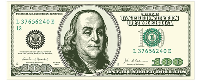 Need a vector dollar bill template?